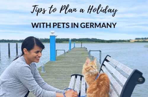 holiday with pets in germany