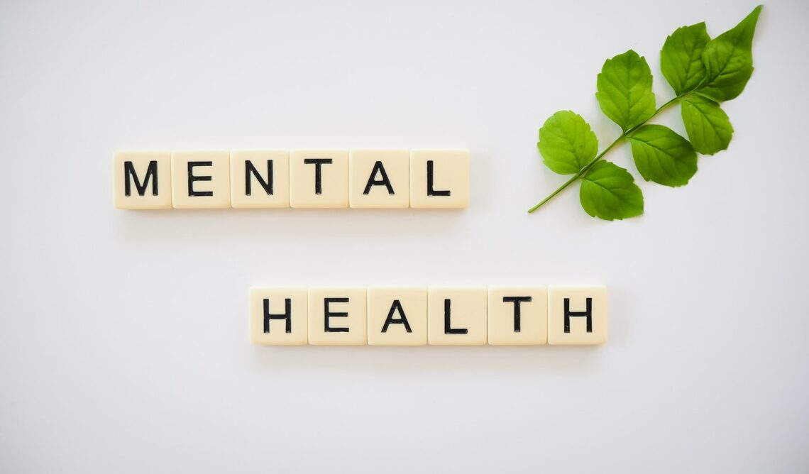 mental health care in germany english